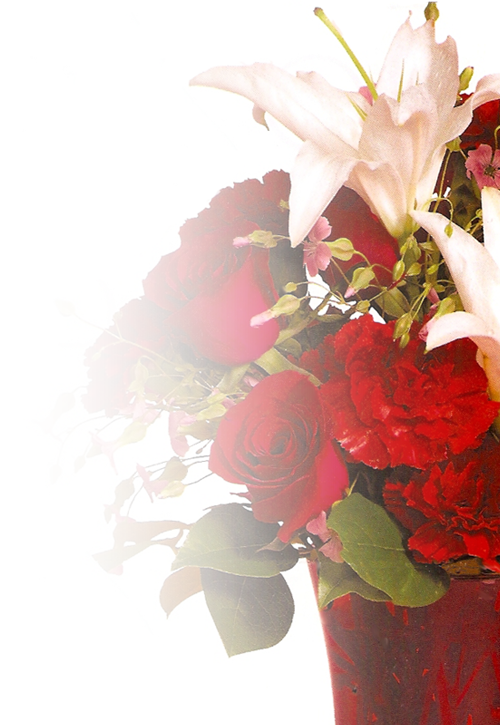 Christmas Flower Arrangements Flowers For All Occasions